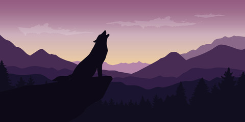 wolf at beautiful purple mountain wildlife nature landscape vector illustration EPS10
