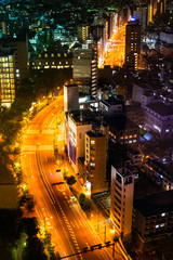 Aerial view of road in Tokyo city, cityscape skyline.