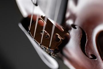 Geige im detail