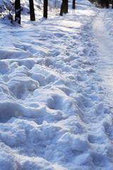 Footpath Across Winter