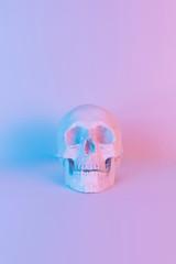 Pastel neon blue and pink light paint on plaster skull