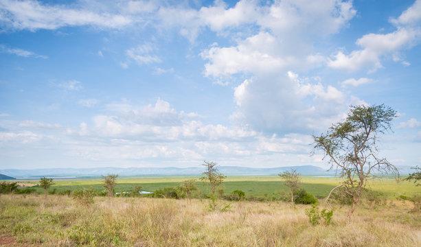 Akagera Plains