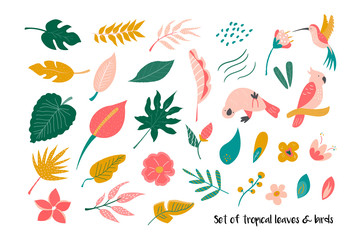 Big set of bright tropical leaves and birds.