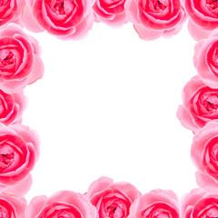 Elegant seamless roses pattern background