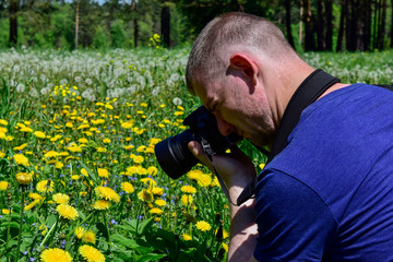 The young man takes photos of yellow flowers on the field.