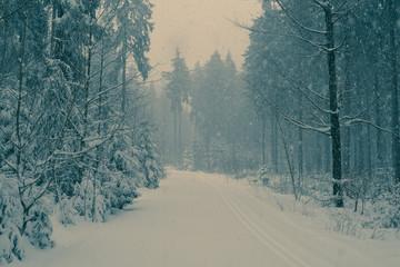 Romantischer Winterwald verschneite Bäume