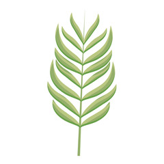 branch with leafs icon