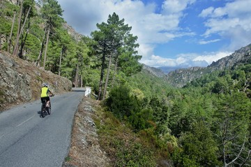 Corsica-cyclist on the way in pass Restonica