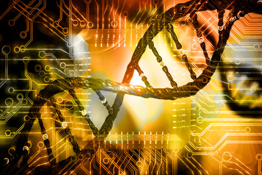 DNA and circuits board concept bioinformatics DNA data storage DNA protein database mining 3d rendering