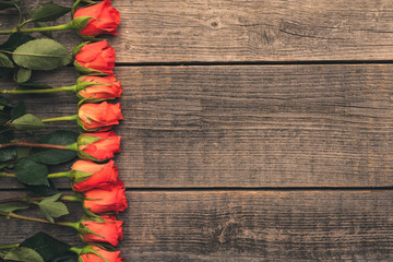 Red, fragrant roses arranged in a row against the background of old, natural boards. Stylish composition of flowers with free space. Frame made of wood and plants. Beautiful flowers for every occasion