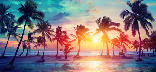 Photo sur Aluminium Mer coucher du soleil Palm Trees Silhouettes On Tropical Beach At Sunset - Modern Vintage Colors