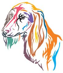 Colorful decorative portrait of Dog Saluki vector illustration