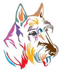 Colorful decorative portrait of Dog Scottish Terrier vector illustration