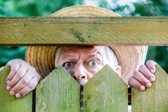 a curious man looks over a garden fence