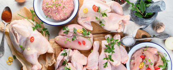 Different types of fresh chicken meat.