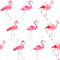 Tuinposter Flamingo Seamless pattern watercolor exotic bird pink flamingo.