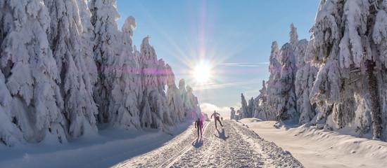 Wintersport Loipe im Erzgebirge