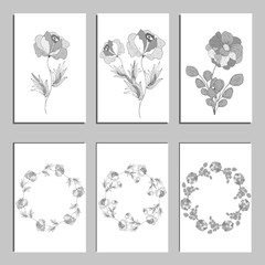 Botanical card with wild flowers and leaves. Spring ornament concept. Floral poster, invite. Vector layout decorative greeting card or invitation design background. Hand drawn illustration.