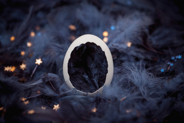 Eggshell in blue feathers with stars