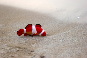 toy fish in the beach peep