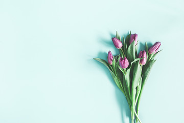 Flowers composition. Purple tulip flowers on pastel blue background. Valentines day, mothers day, womens day concept. Flat lay, top view, copy space