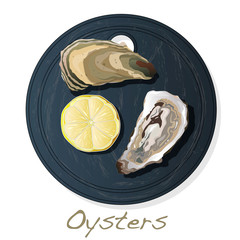 Fresh opened oyster vectorv images set on plate / dish isolated on white background.