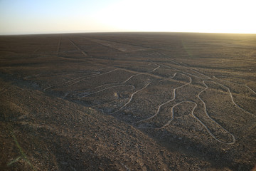 The famous large ancient geoglyphs Nazca lines called Arbol (tree) in the evening sunlight, view from observation tower at Nazca desert, Ica region, Peru
