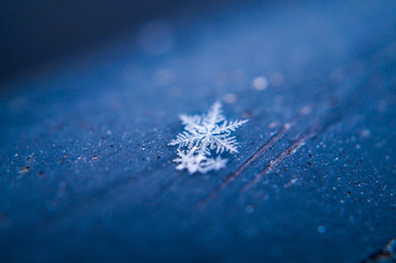 close up of a snow flake