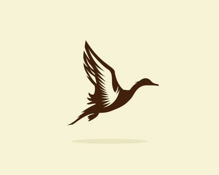 Flying duck vector illustration, duck icon or symbol, duck hunt