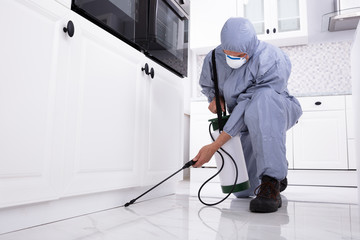 Pest Control Worker Spraying Pesticide On White Cabinet