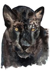 watercolor drawing of a black jaguar, panther, golden eyes