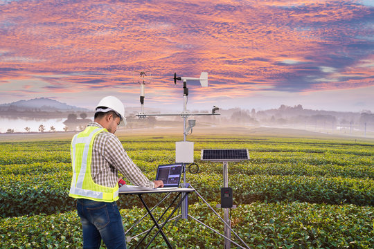 Agronomist using tablet computer collect data with meteorological instrument to measure the wind speed, temperature and humidity and solar cell system in tea agricultural field, Smart farm concept