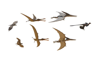 different flying dinosaurs on white background render 3d