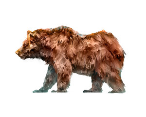 painted colored animal walking bear side view