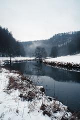 Winterspaziergang I
