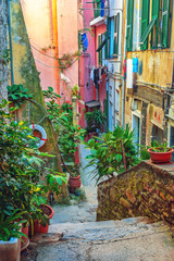 Wall Mural - Beautiful alley in Vernazza, Old town Liguria, Italy, Europe