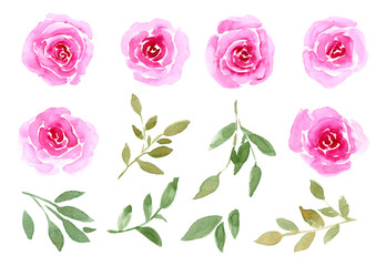 Watercolor set of blooming flower buds, roses, twigs and leaves. Illustration isolated on white background. Hand-drawn floral decorative elements.
