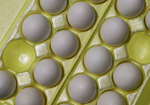 White chicken eggs in a cardboard package with empty space, background