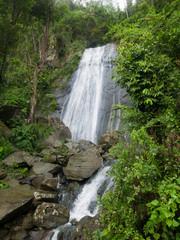 Beautiful waterFall in El Yunque, Puerto Rico, USA