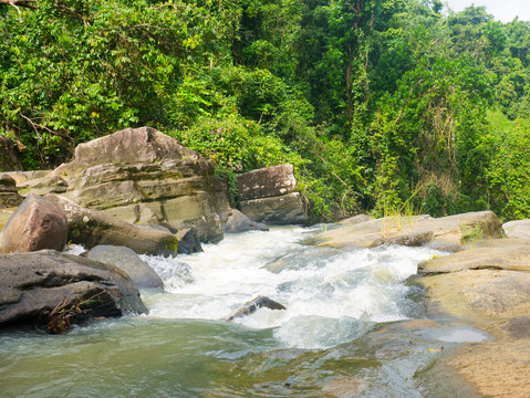 Rushing water and river in El Yunque National Forest.