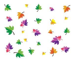 autumn leaves logo vector template
