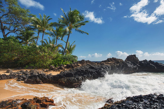 Dramatic Waves of Makena Cove, Maui HI