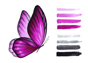 Watercolor pink butterfly and brush