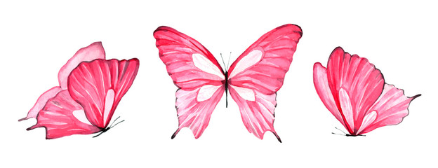 Watercolor set of pink butterfly isolated on white background