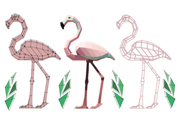 three low poly flamingos with plants: flamingo with points, flamingo in colour  and graphic, vector graphic  illustration on white background