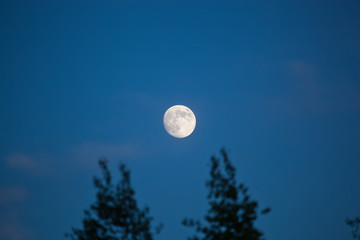 Full moon on a clear sky. A natural blurred landscape autumn. Astrakhan Region, Russia. Defocused.