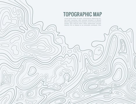 Contour line map. Elevation contouring outline cartography texture. Topographical relief map vector background