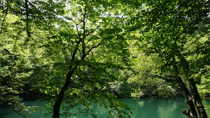 Beautiful lake view landscape. Sky and tree reflection on lake in Yedigoller Nature Park, Bolu District in Turkey. Amazing collaboration of blue and green. Multiple colors and amazing lake scenery.