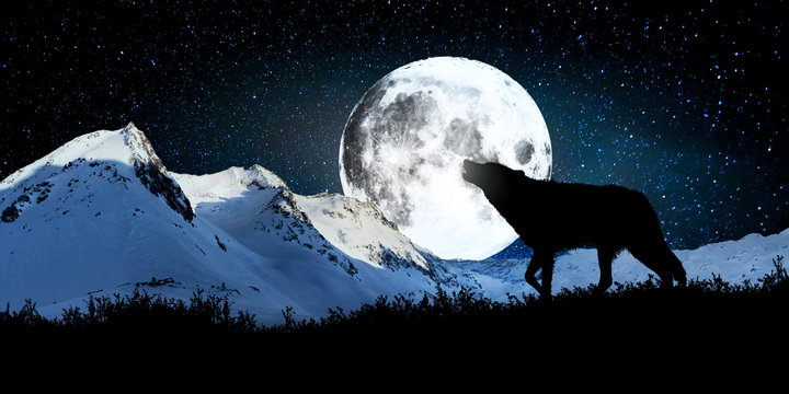 Wolf howling at the full moon with the backdrop of snow-capped mountains