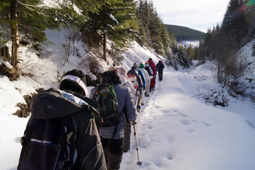 Winter adventures. Hike in the forest. Carpathians. Ukraine.